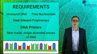 Essentials Concept Video - Polymerase Chain Reaction (PCR)
