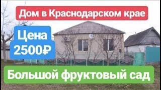 Дом в Краснодарском крае с большим фруктовым садом.