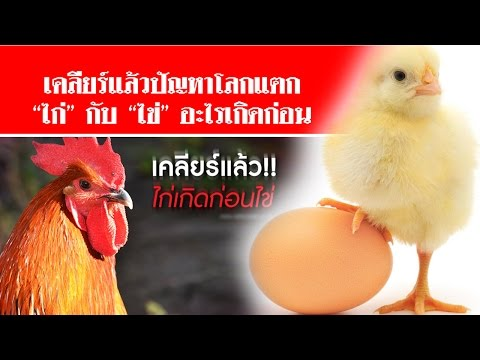 อุจจาระไข่หนอน invitro