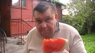 melon gerzdorf (prezent od widzów} potraktowany maczetą