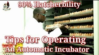 How to set & operate an Automatic egg incubator / How to set up a hatchery
