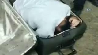 Гражданка Узбекистана пыталась попасть в Турцию в чемодане