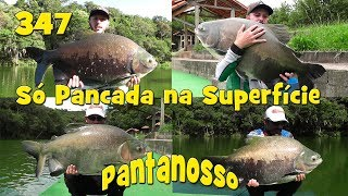 Programa Fishingtur na Tv 347 - Pantanosso Pescarias