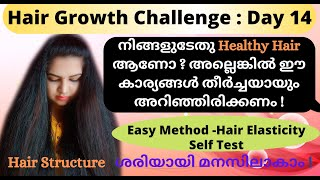 How To Identify Healthy Hair? / Easily Hair Elasticity Test ! / Type Of Hair Structure !