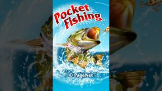 На что ловить снетка в карманной рыбалке