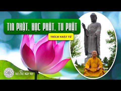 Tin Phật, học Phật và tu Phật (17/06/2011) Thích Nhật Từ