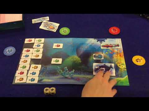 Bower's Game Corner: Reef Route Review