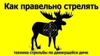 Смотреть онлайн Особенности охоты на движущуюся дичь