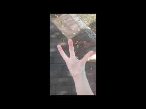 Die Behandlung gribka der Nägel in tule