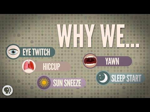 Proč nám cuká v oku a další bezděčné tělesné jevy
