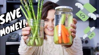 How to make groceries last longer! FOOD STORAGE TIPS