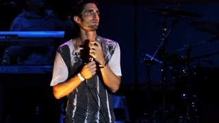 All-American Rejects - 'Mona Lisa' IMO Robin Williams (Busch Gardens Summer Nights 2014)
