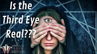 Is the THIRD EYE Real???