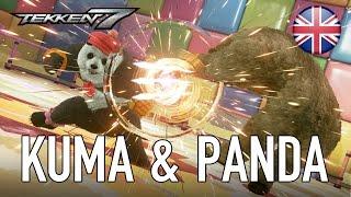 Annuncio Kuma e Panda