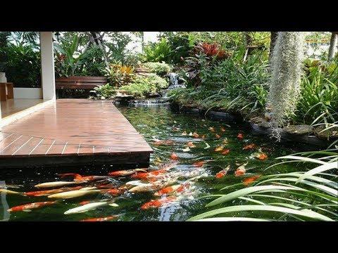 Garden Pond At Best Price In India