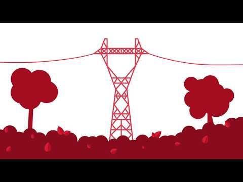 Miernik elektryczny Ufa Kup