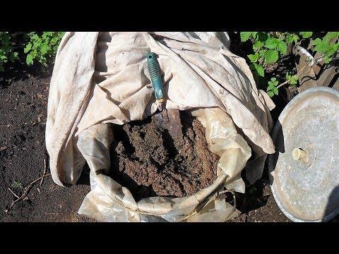 Советы опытных огородников как правильно применять удобрения