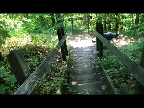The Nature Trail in the area