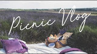 The Lavender Fields with Sarah | VLOG 001 - Video Youtube