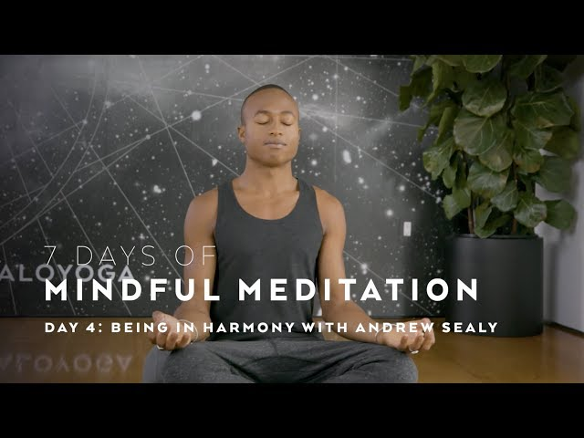 DAY 4: Being in Harmony with Andrew Sealy — 7 Days of Mindful Meditation