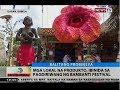 BT: Mga lokal na produkto, ibinida sa pagdiriwang ng Bambanti Festival