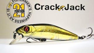 Pontoon 21 crackjack 48f sr