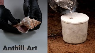 Casting a Seashell with Molten Aluminum - Video Youtube