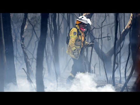 Creating climate policy debate through bushfire crisis is 'tasteless and offensive'