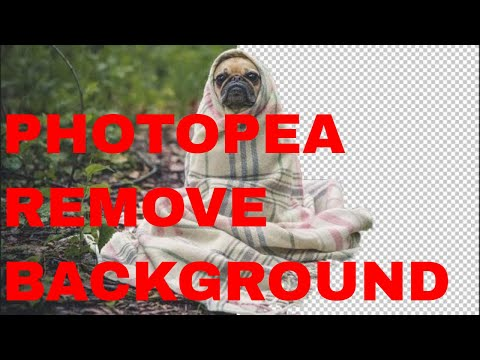 Download Removing The Background From An Image With Photopea Video