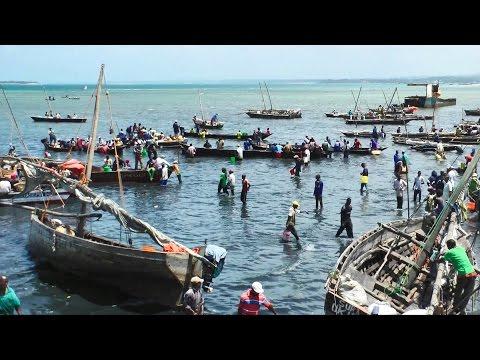 Video Stone Town, Zanzibar, Tanzania in HD