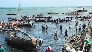 Stone Town, Zanzibar, Tanzania in HD
