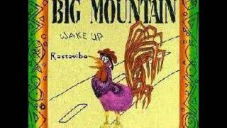 Big mountain Peaceful Revolution