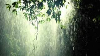 Blue Nectar - Everytime It Rains (Live)