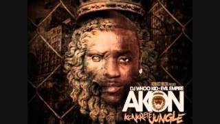Akon Salute 100 Yall ft  Fabolous Money J