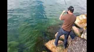 Le Brochet De Toute Une Vie En Street Fishing, 1m38/40cm....