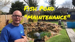 How to maintain a fish pond - How to clean fish pond advisor
