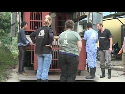 Vietnam Rescue / Nov 2011 Part 3