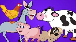 Hewan Ternak | Kuda, Sapi, Kambing, Babi, Domba | Suara Binatang Untuk Anak-anak