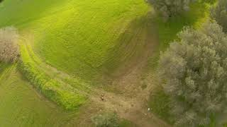 FPV freestyle   Drifting low on a green sea