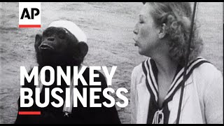 Monkey Business - 1937 | The Archivist Presents | #248
