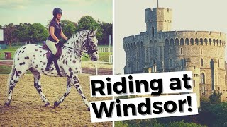 ROYAL WINDSOR Horse Show With A British Appaloosa! | DiscoverTheHorse [Episode #43]