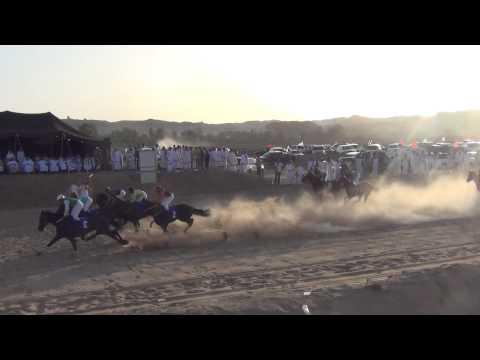 الشوط الختامي للخيل العربيه على جائزة السياره في ميدان تبوك 30/5/2014