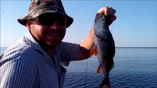Самодур снасть для ловли рыбы