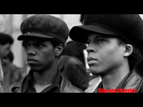 Vanguard of the Revolution - The Real Story of the Black Parther Party
