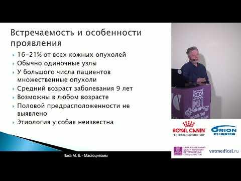 Пака М. В. -  Мастоцитомы и мастоцитоз