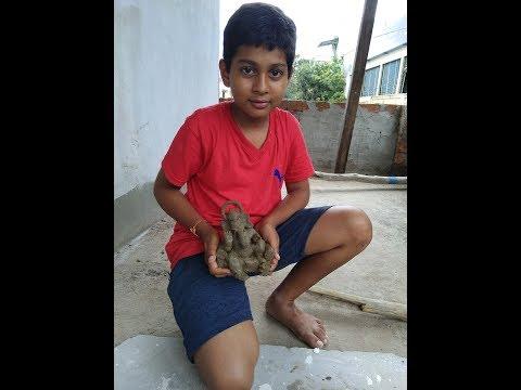 Easy Making of Eco Friendly Ganesha at home !