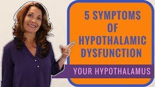 Hypothalamus Hormones | 5 Hypothalamus Functions & Symptoms
