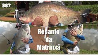 Os tambas gigantes e pirararas do Recanto da Matrinxã - Fishingtur na Tv 387