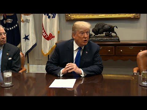 Trump Talks Immigration With GOP Senators