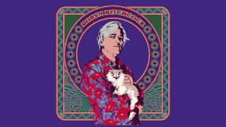 "<b>Robyn Hitchcock</b>  ""I Want To Tell You About What I Want"" Official Audio"